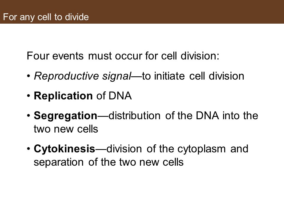 For any cell to divide Four events must occur for cell division: Reproductive signal—to initiate cell division Replication of DNA Segregation—distribution of the DNA into the two new cells Cytokinesis—division of the cytoplasm and separation of the two new cells