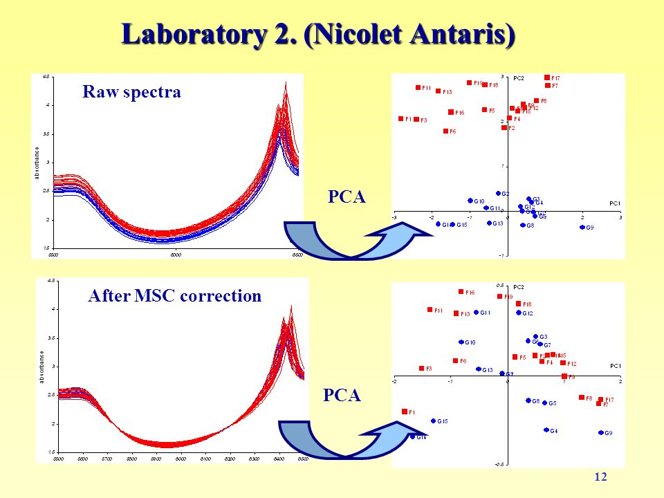 12 Laboratory 2. (Nicolet Antaris) Raw spectra PCA After MSC correction PCA