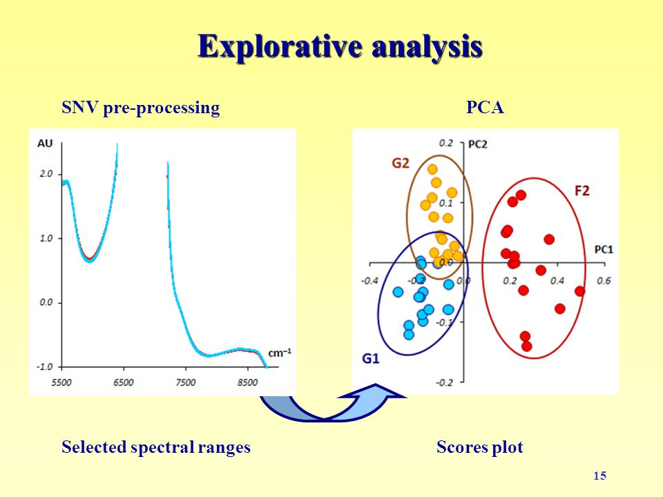 15 Explorative analysis PCA Scores plotSelected spectral ranges SNV pre-processing