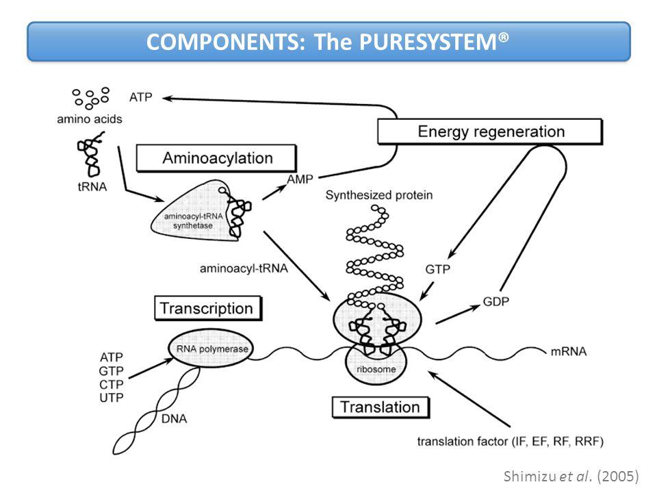 COMPONENTS: The PURESYSTEM® Shimizu et al. (2005)