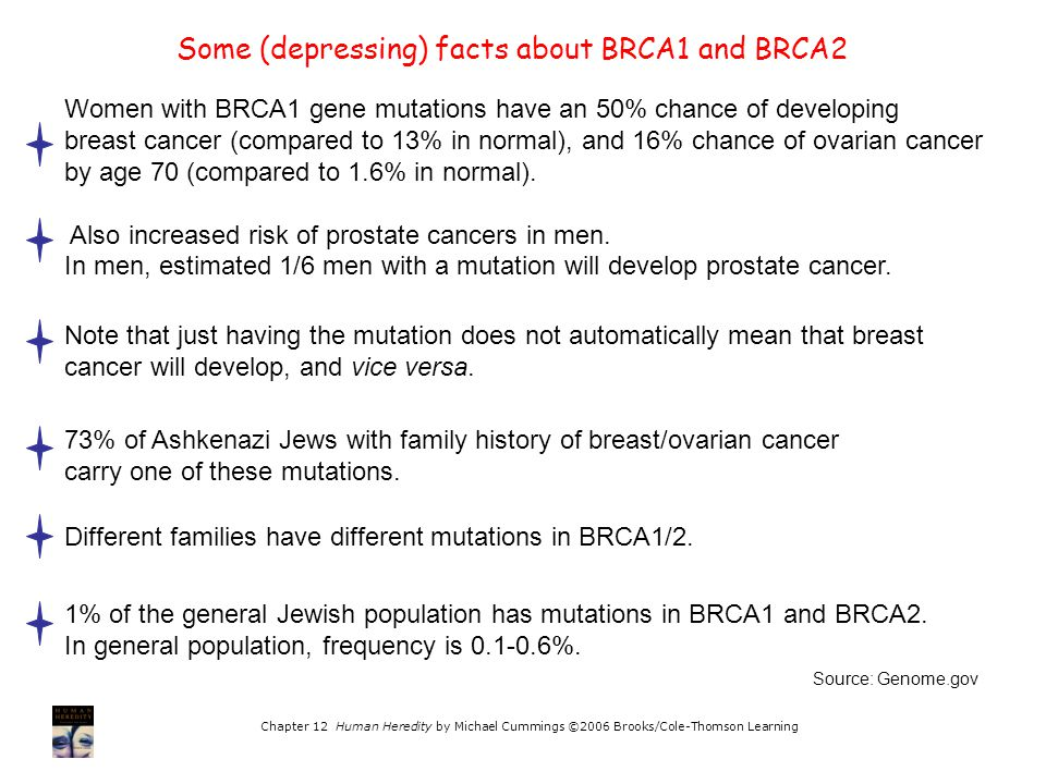 Chapter 12 Human Heredity by Michael Cummings ©2006 Brooks/Cole-Thomson Learning Some (depressing) facts about BRCA1 and BRCA2 Source: Genome.gov Wome