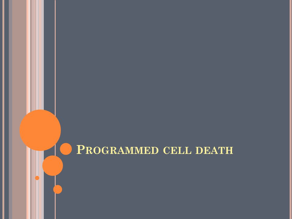 P ROGRAMMED CELL DEATH