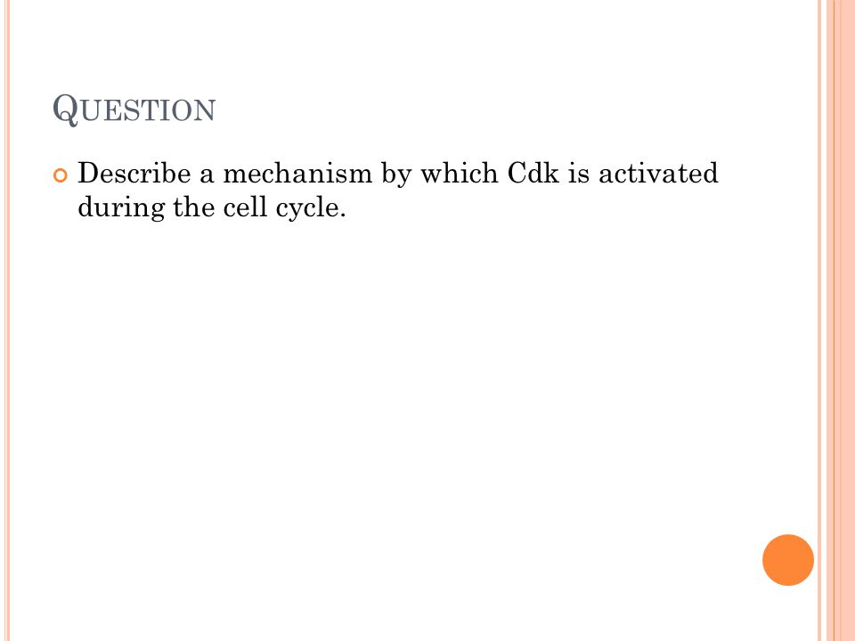 Q UESTION Describe a mechanism by which Cdk is activated during the cell cycle.