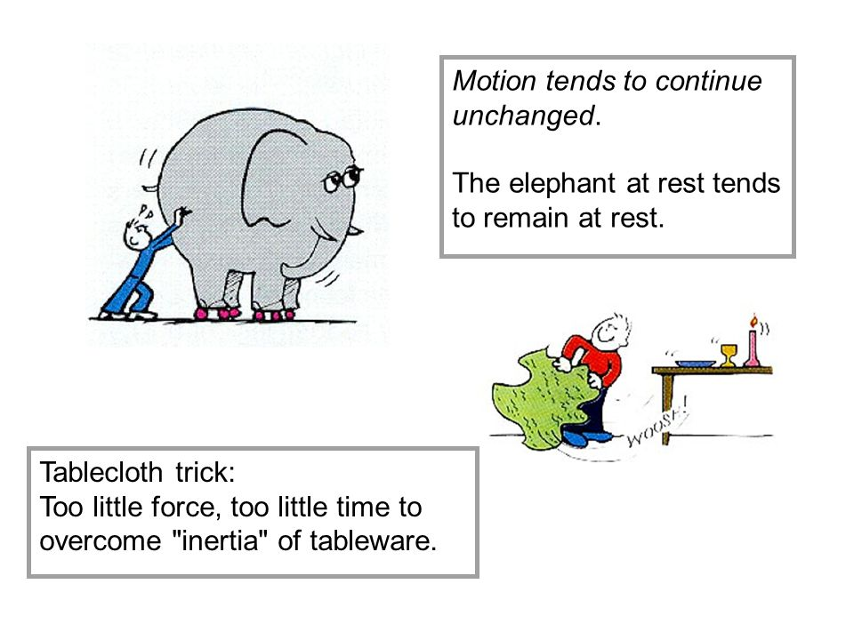 Motion tends to continue unchanged.The elephant at rest tends to remain at rest.