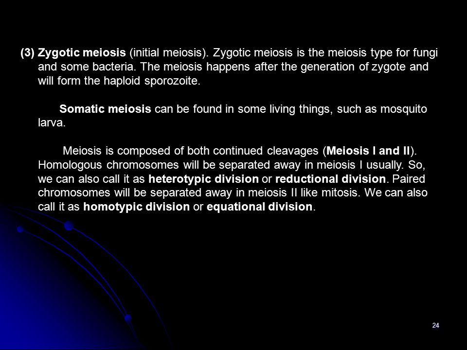 24 (3) Zygotic meiosis (initial meiosis). Zygotic meiosis is the meiosis type for fungi and some bacteria. The meiosis happens after the generation of