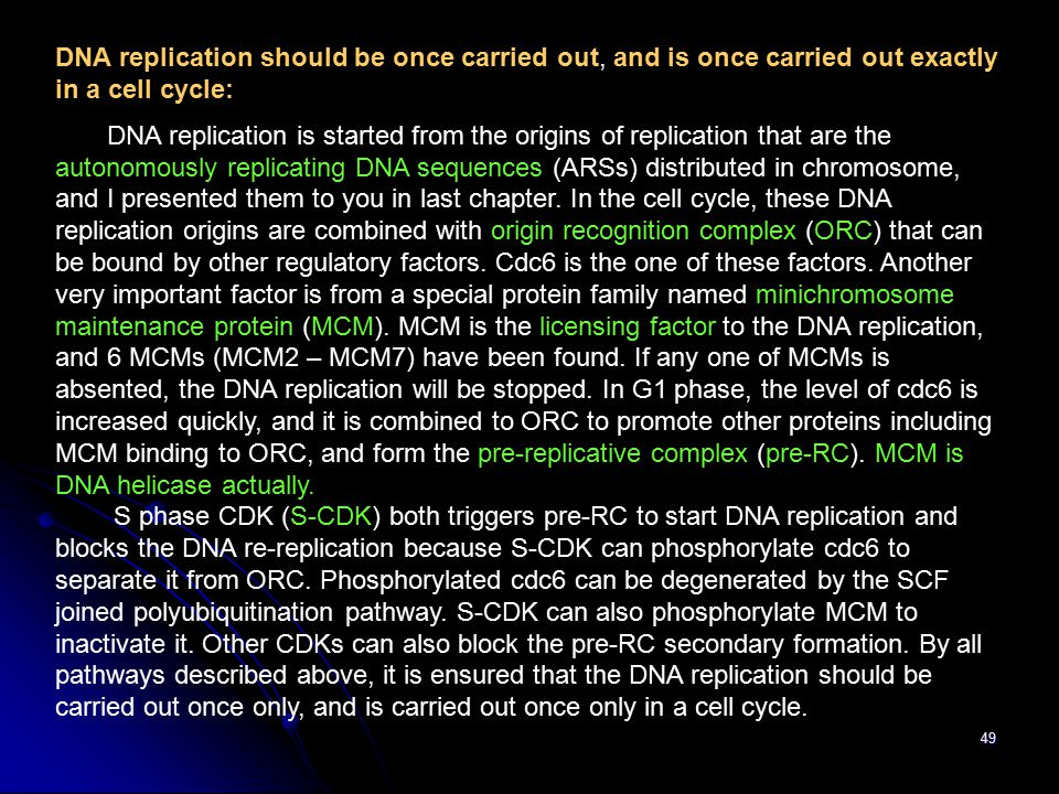 49 DNA replication should be once carried out, and is once carried out exactly in a cell cycle: DNA replication is started from the origins of replication that are the autonomously replicating DNA sequences (ARSs) distributed in chromosome, and I presented them to you in last chapter.
