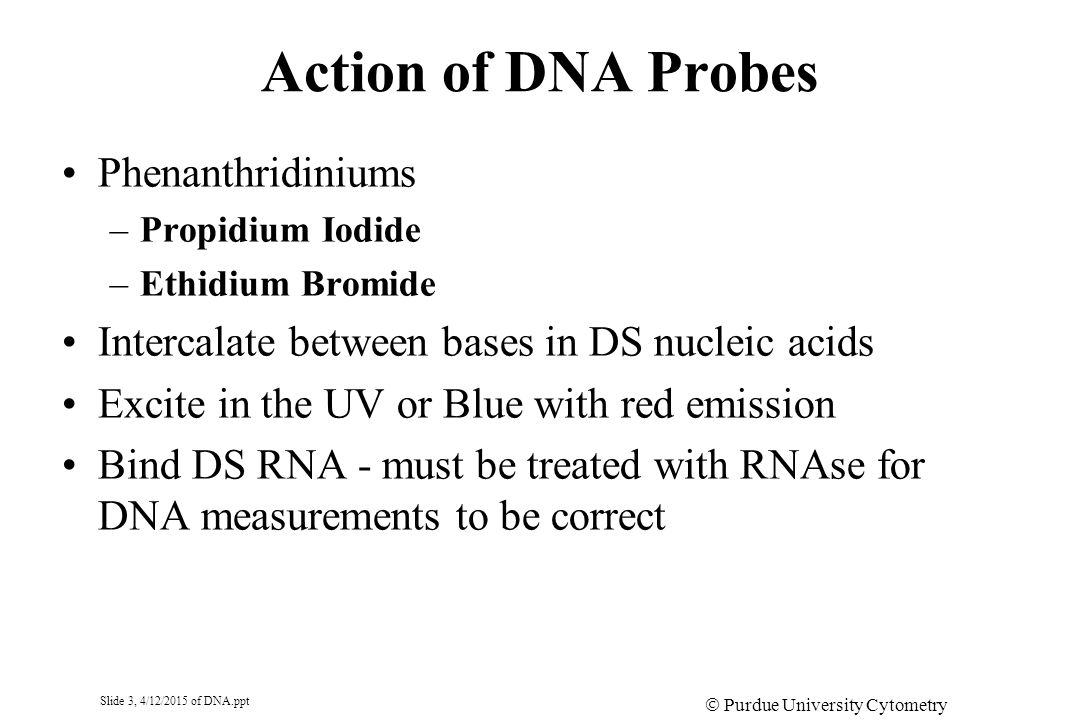 Slide 4, 4/12/2015 of DNA.ppt  Purdue University Cytometry Laboratories DNA PROBES N+N+ C2H5C2H5 NH 2 Ethidium N+N+ C2H2)3C2H2)3 NH 2 N+N+ C2H5C2H5 CH 3 C2H5C2H5 Propidium