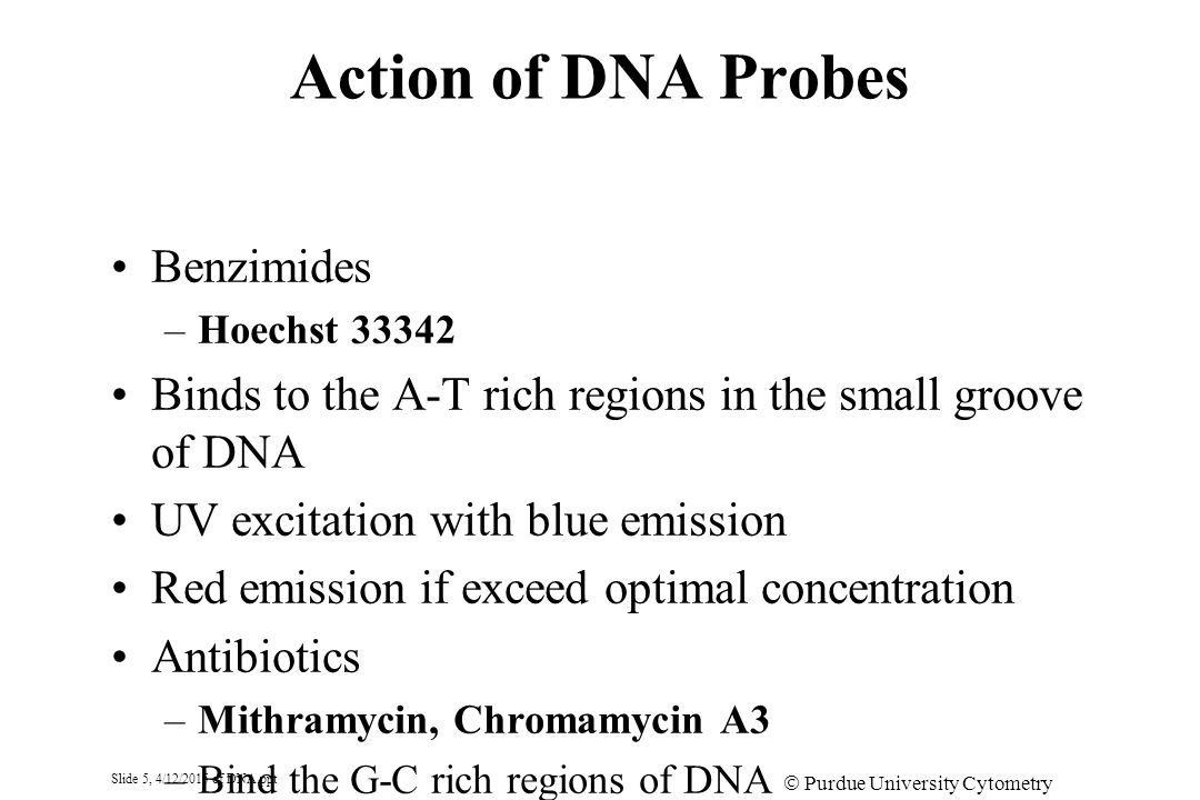 Slide 6, 4/12/2015 of DNA.ppt  Purdue University Cytometry Laboratories Action of DNA Probes Acridine Orange - AO –Intercalates into the DS DNA –Binds to single stranded nucleic acids by stacking on the charged phosphates –Blue excitation and green emission for DS DNA –Red fluorescence emission for SS DNA Pyronyn Y is a related dye to AO –Used for RNA measurement after blocking DNA with non-fluoresceinated DNA probe