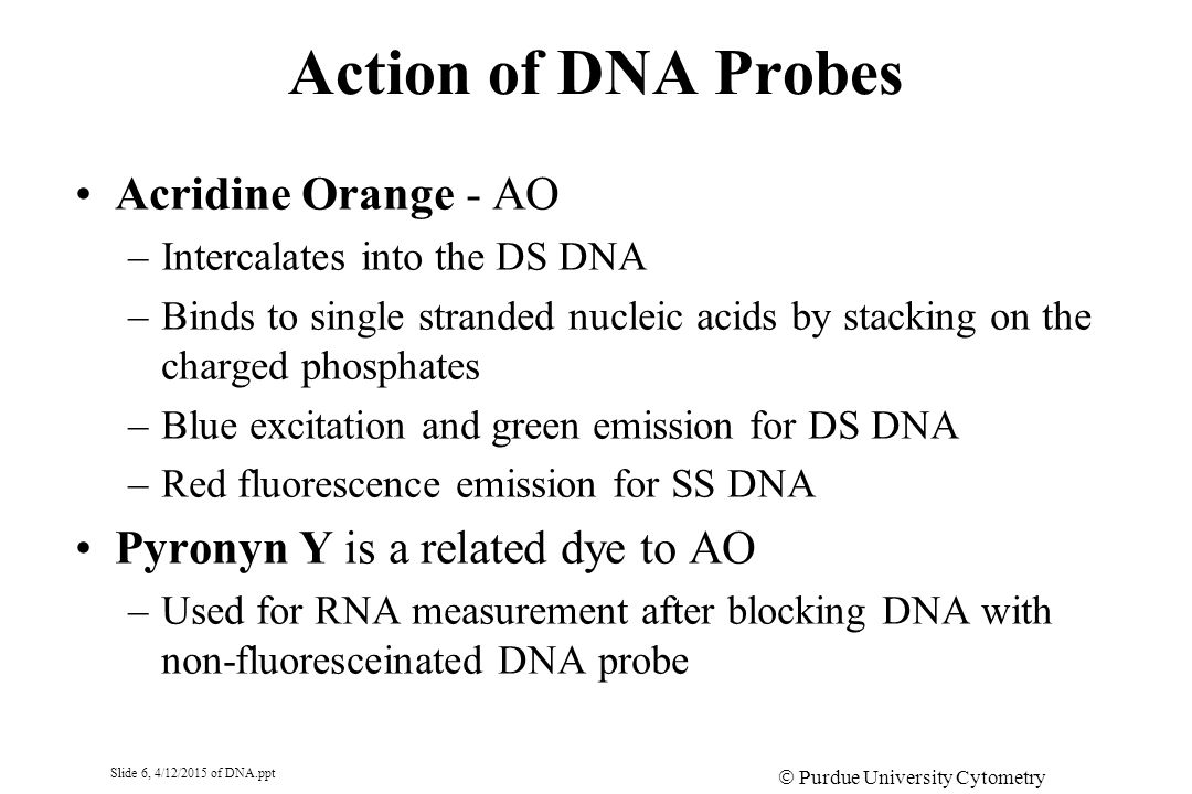 Slide 6, 4/12/2015 of DNA.ppt  Purdue University Cytometry Laboratories Action of DNA Probes Acridine Orange - AO –Intercalates into the DS DNA –Binds to single stranded nucleic acids by stacking on the charged phosphates –Blue excitation and green emission for DS DNA –Red fluorescence emission for SS DNA Pyronyn Y is a related dye to AO –Used for RNA measurement after blocking DNA with non-fluoresceinated DNA probe