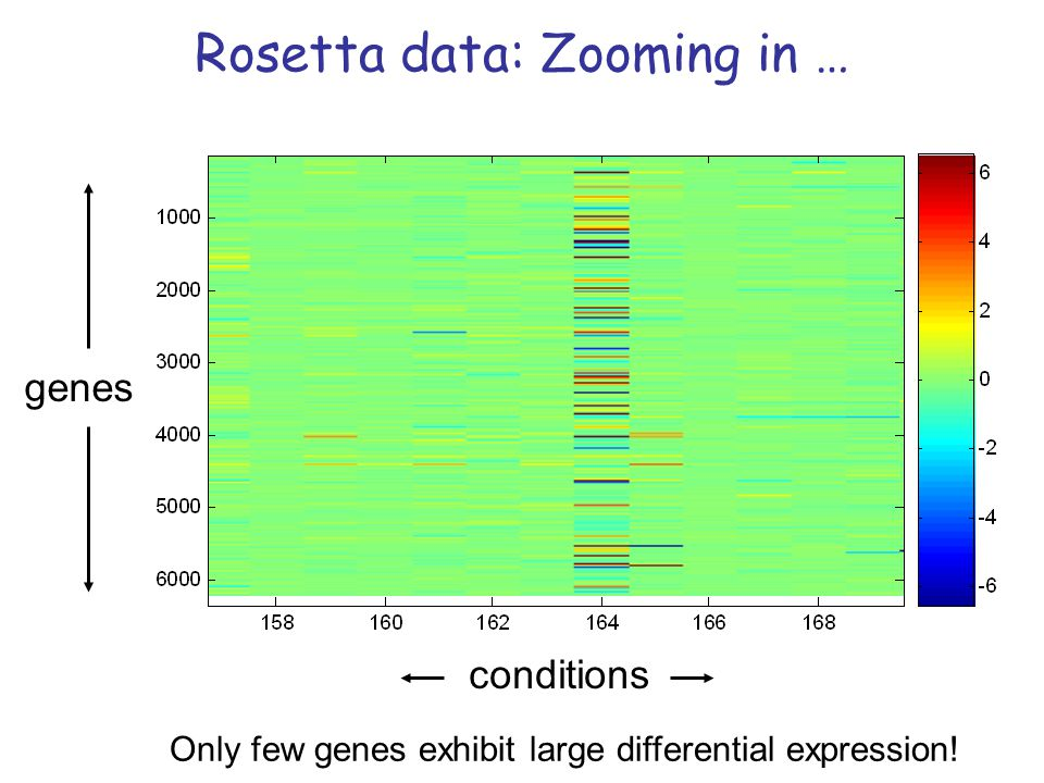 Rosetta data: Zooming in … Only few genes exhibit large differential expression! genes conditions