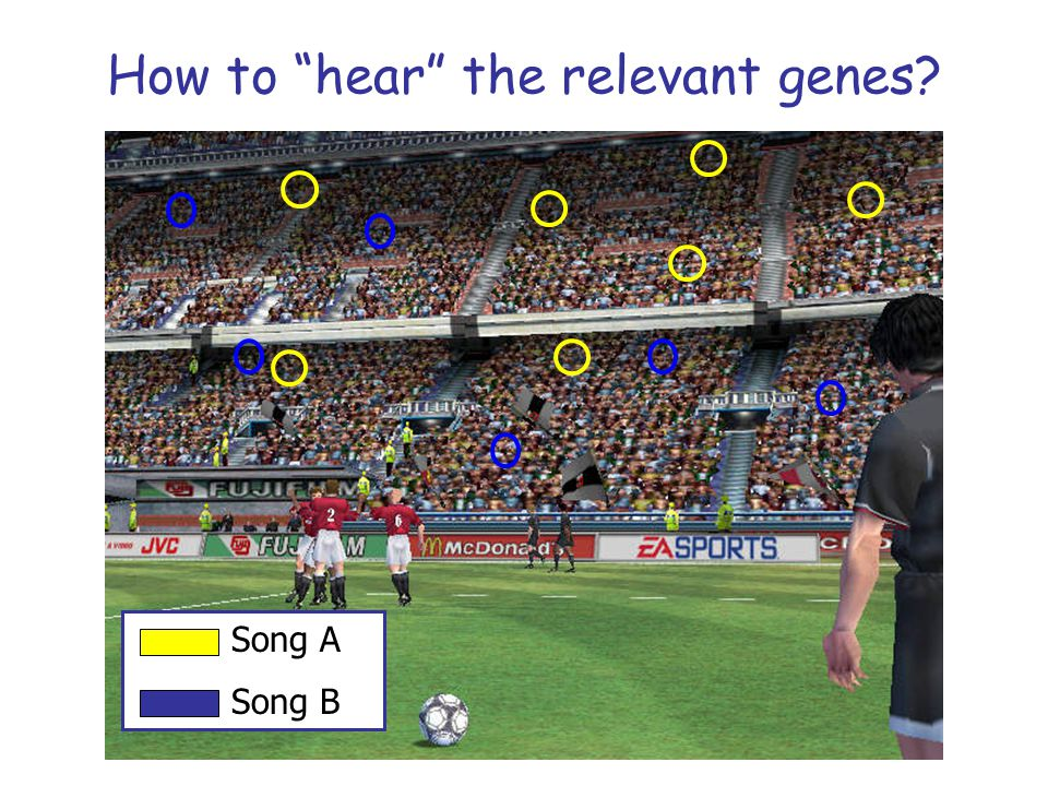 """How to """"hear"""" the relevant genes? Song A Song B"""