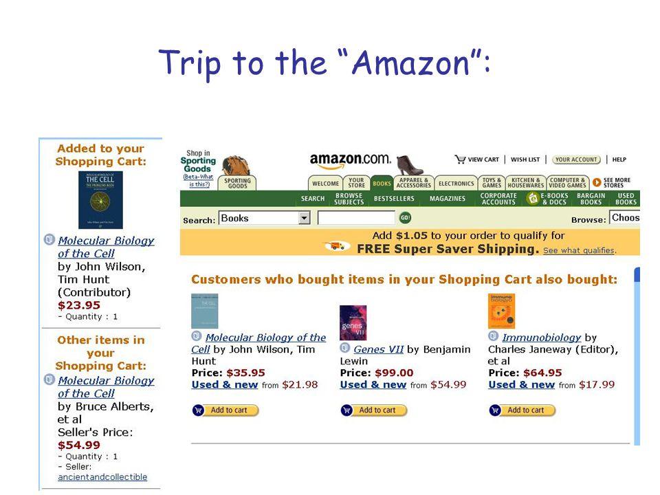 """Trip to the """"Amazon"""":"""