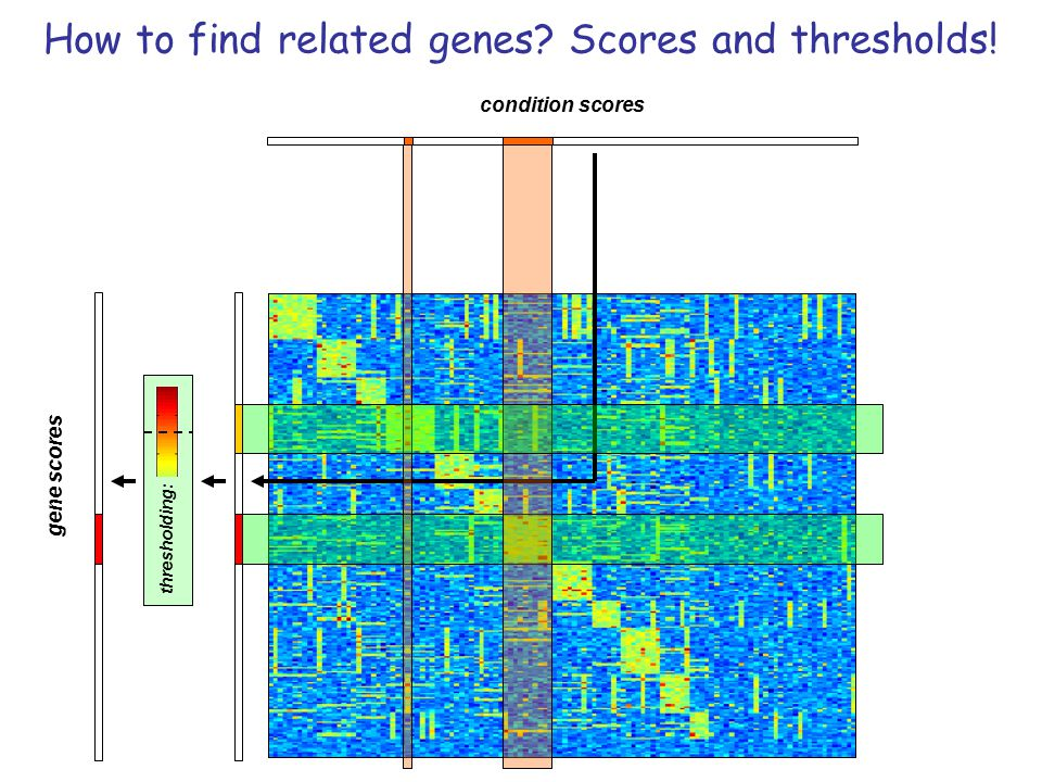 gene scores condition scores thresholding: How to find related genes? Scores and thresholds!