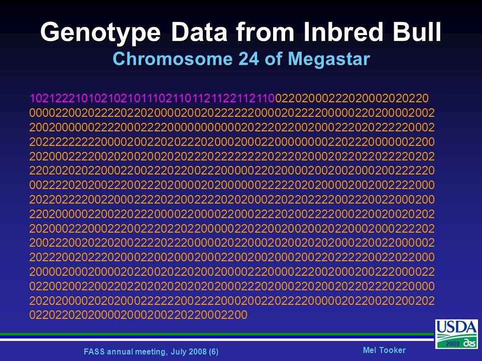 FASS annual meeting, July 2008 (7) Mel Tooker 2008 Close Inbreeding (F=14.7%): Double Grandson of Aerostar Aerostar Megastar Chromosome 24