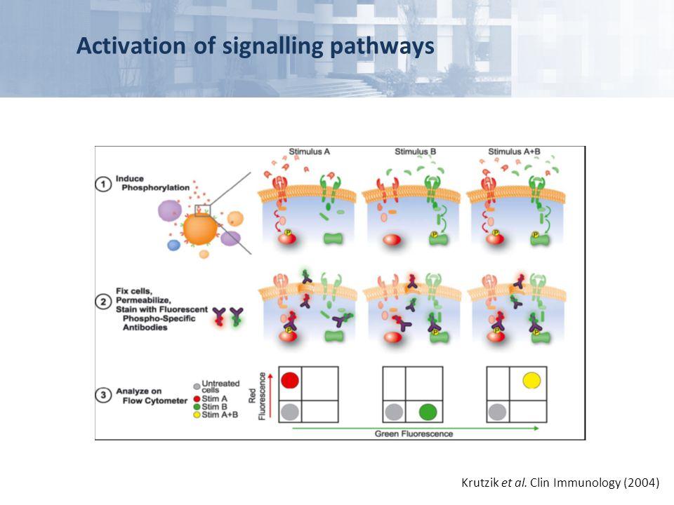 Activation of signalling pathways Krutzik et al. Clin Immunology (2004)
