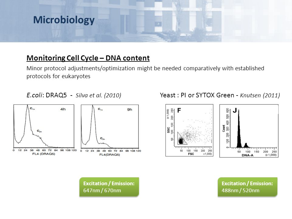 Microbiology Monitoring Cell Cycle – DNA content Minor protocol adjustments/optimization might be needed comparatively with established protocols for