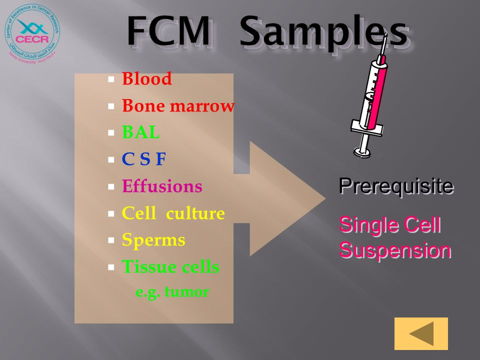  Blood  Bone marrow  BAL  C S F  Effusions  Cell culture  Sperms  Tissue cells e.g. tumor Prerequisite Single Cell Suspension Prerequisite Sin