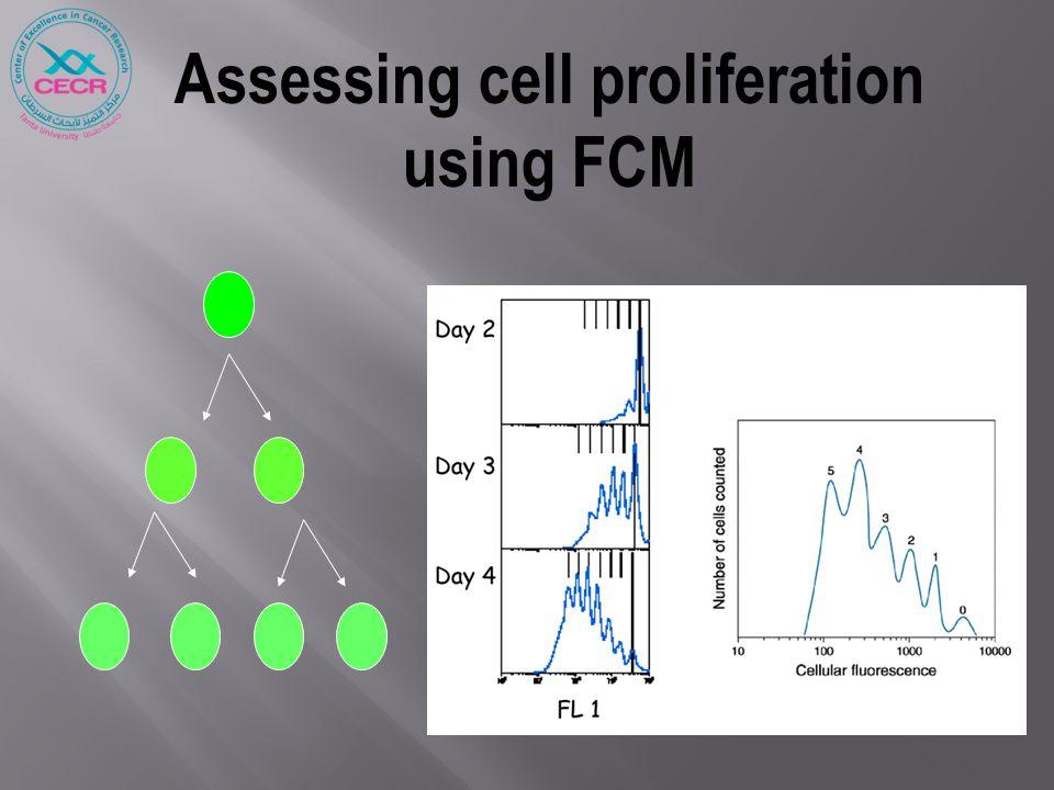 Assessing cell proliferation using FCM