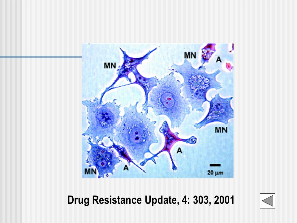 Drug Resistance Update, 4: 303, 2001