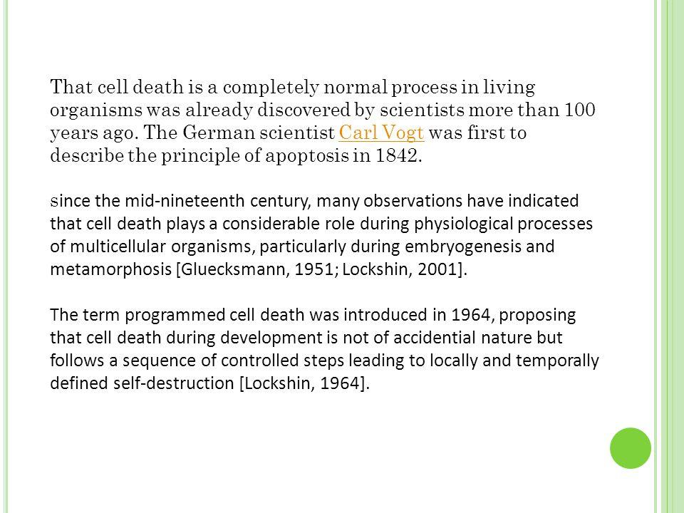 Apoptotic versus necrotic morphology [Saraste, 2000].
