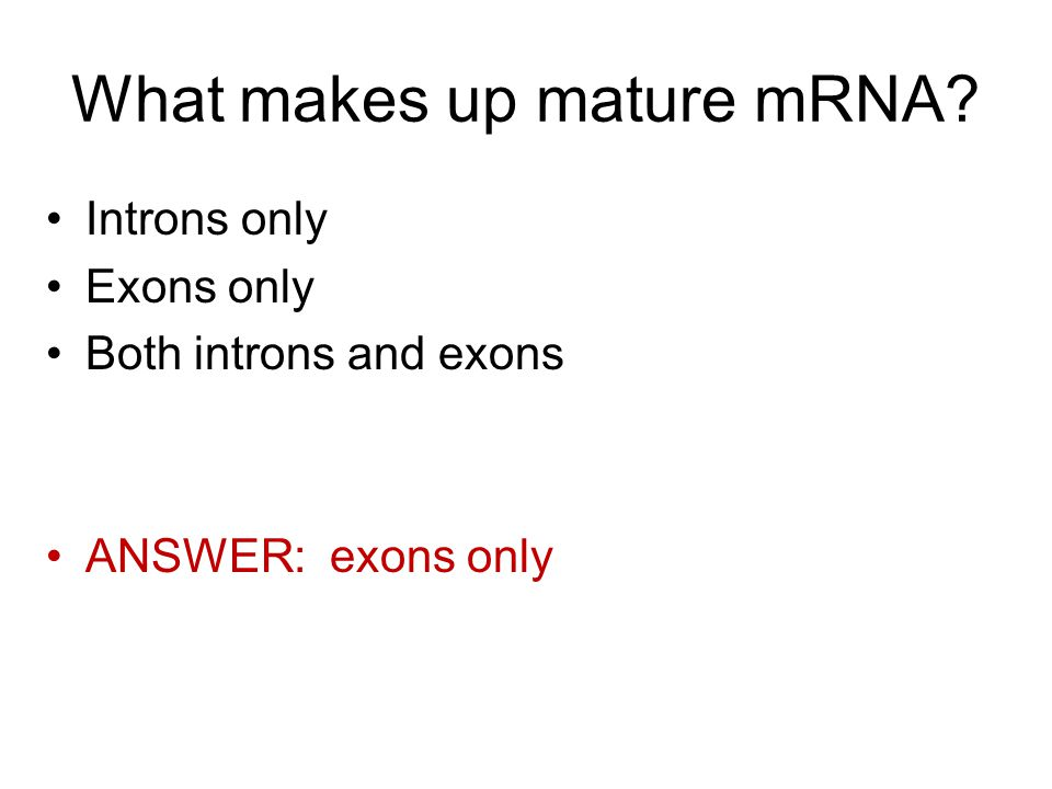 What makes up mature mRNA Introns only Exons only Both introns and exons ANSWER: exons only