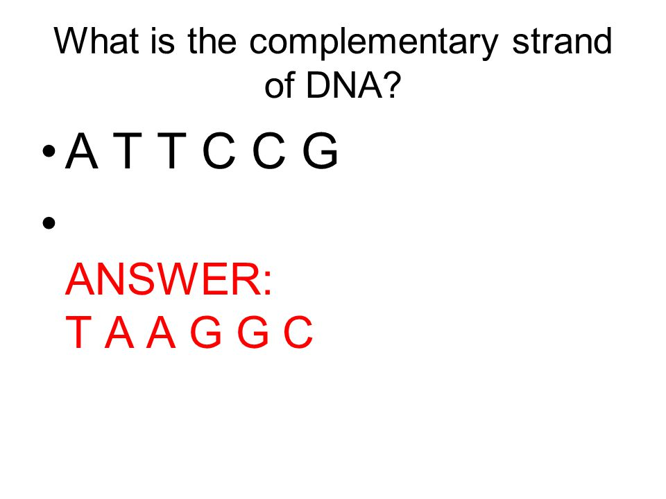 What is the complementary strand of DNA? A T T C C G ANSWER: T A A G G C