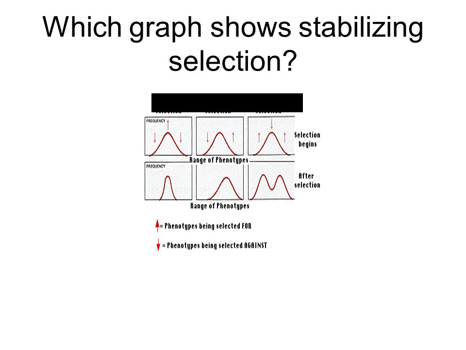 Which graph shows stabilizing selection