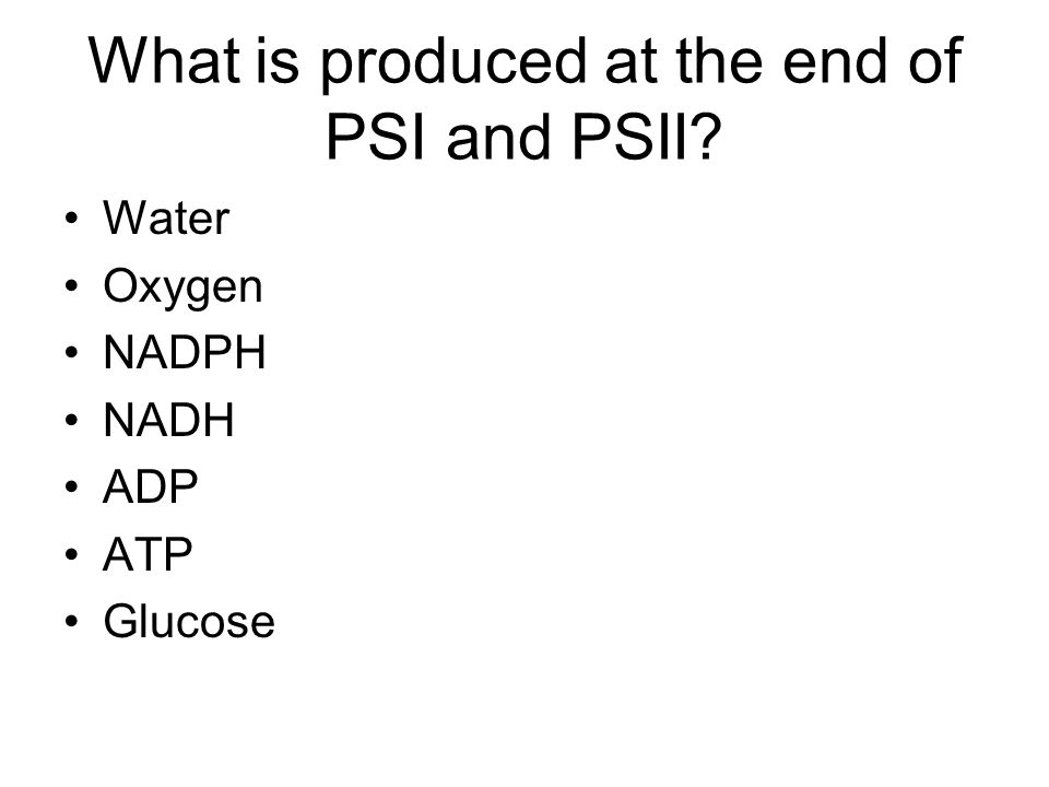 What is produced at the end of PSI and PSII? Water Oxygen NADPH NADH ADP ATP Glucose