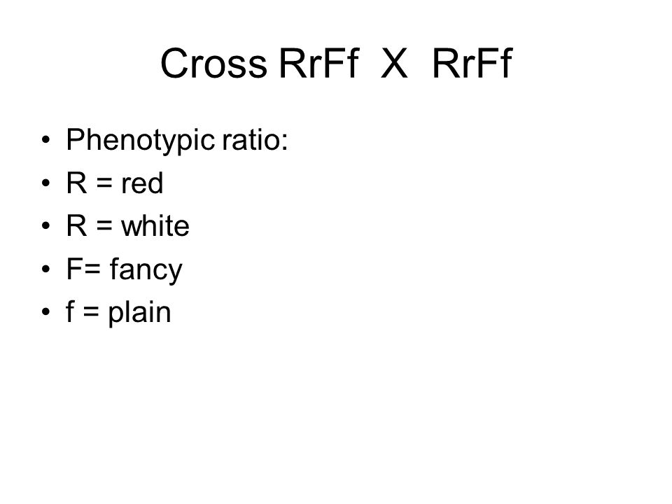 Cross RrFf X RrFf Phenotypic ratio: R = red R = white F= fancy f = plain