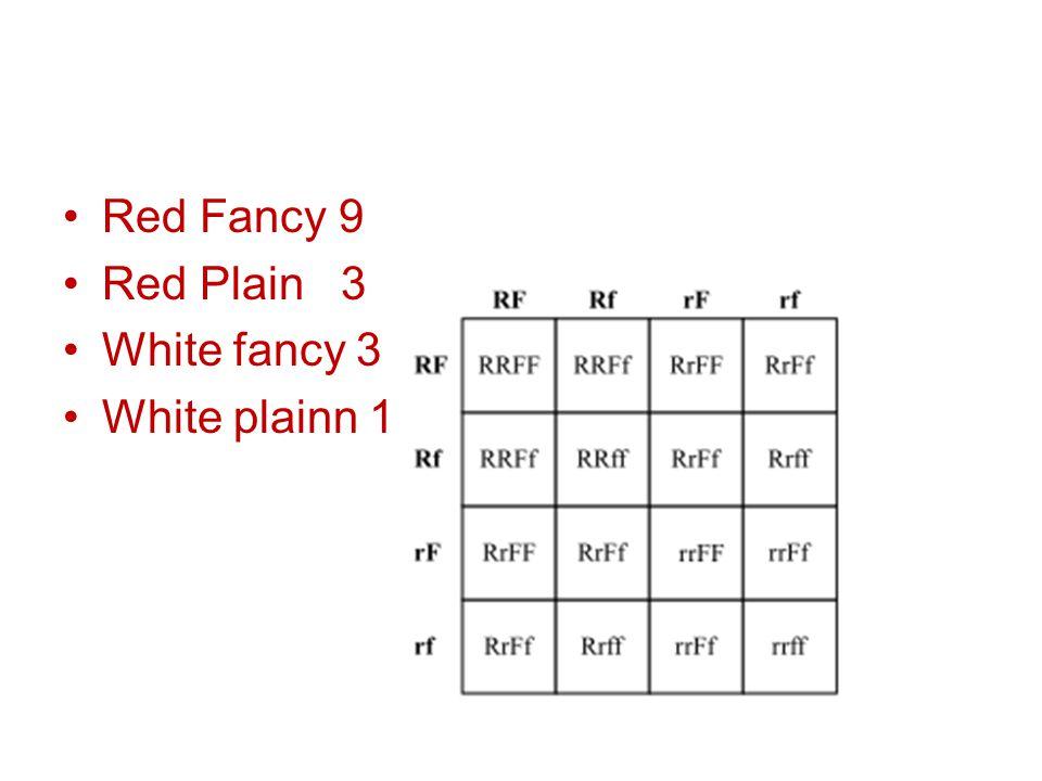 Red Fancy 9 Red Plain 3 White fancy 3 White plainn 1