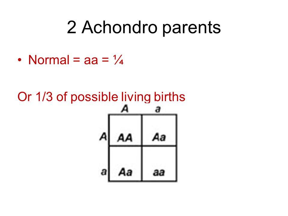 2 Achondro parents Normal = aa = ¼ Or 1/3 of possible living births