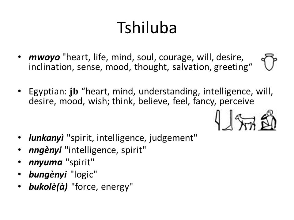 Tshiluba mwoyo heart, life, mind, soul, courage, will, desire, inclination, sense, mood, thought, salvation, greeting Egyptian: jb heart, mind, understanding, intelligence, will, desire, mood, wish; think, believe, feel, fancy, perceive lunkanyì spirit, intelligence, judgement nngènyi intelligence, spirit nnyuma spirit bungènyi logic bukolè(à) force, energy