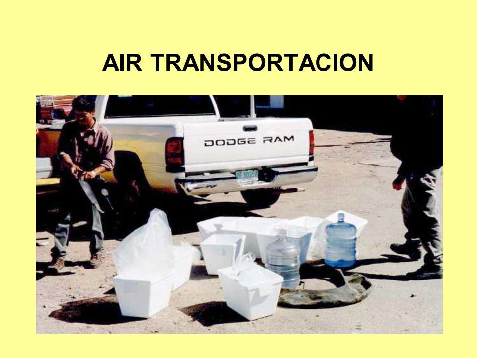 AIR TRANSPORTACION
