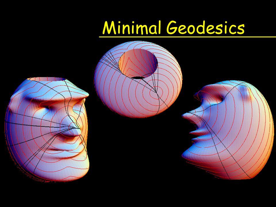 Minimal Geodesics