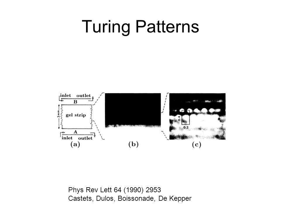 Turing Patterns Phys Rev Lett 64 (1990) 2953 Castets, Dulos, Boissonade, De Kepper