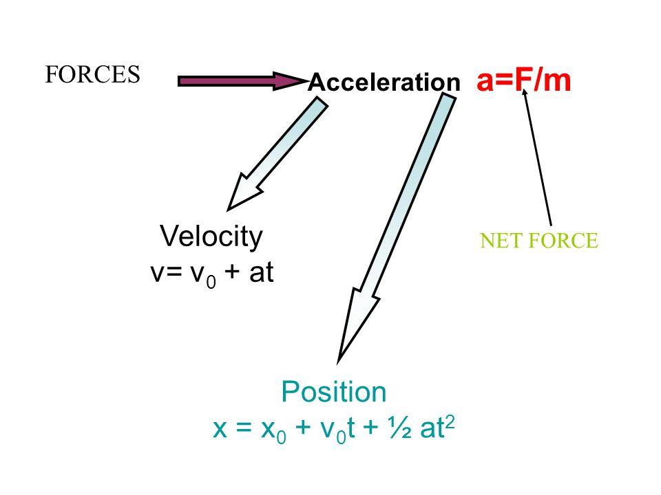 Acceleration a=F/m Velocity v= v 0 + at Position x = x 0 + v 0 t + ½ at 2 FORCES NET FORCE