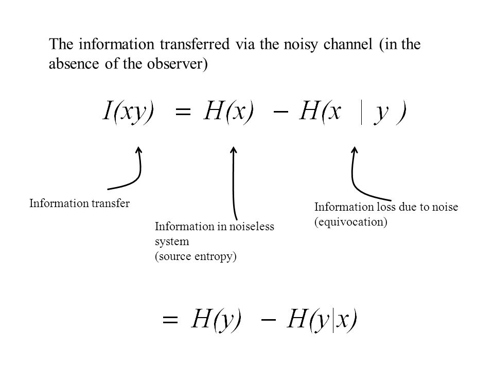 The information transferred via the noisy channel (in the absence of the observer) Information transfer Information in noiseless system (source entropy) Information loss due to noise (equivocation)