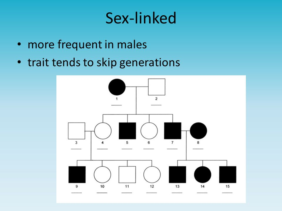 Sex-linked more frequent in males trait tends to skip generations