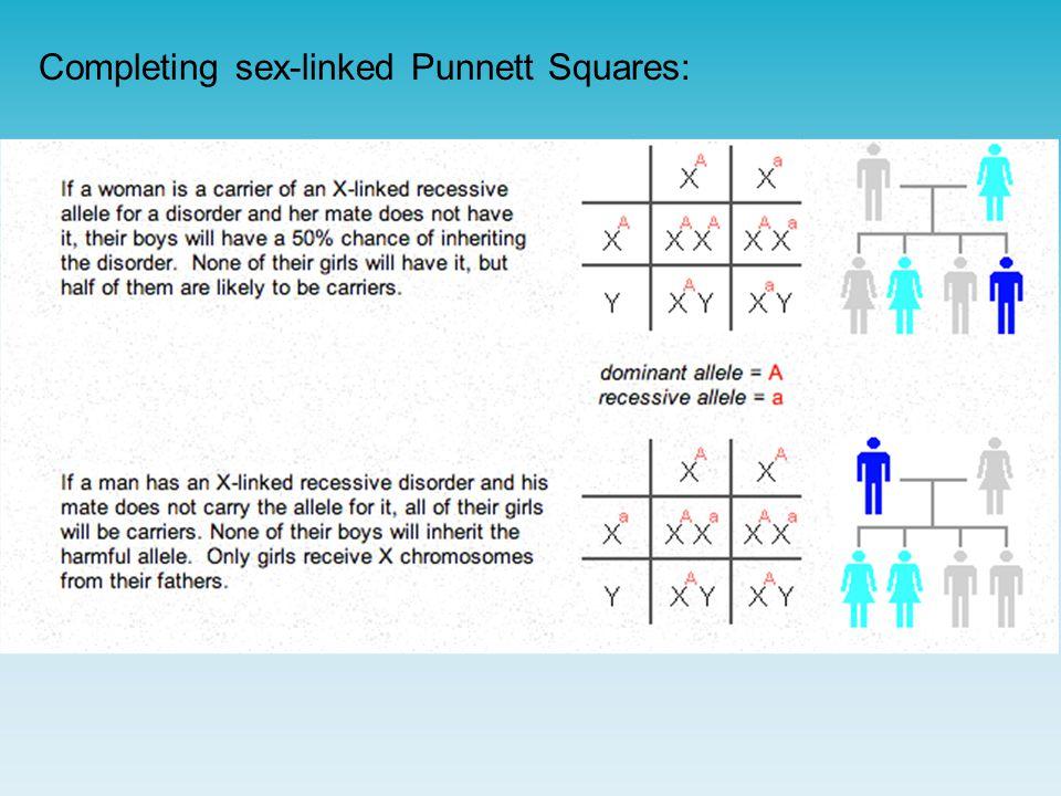 Completing sex-linked Punnett Squares: