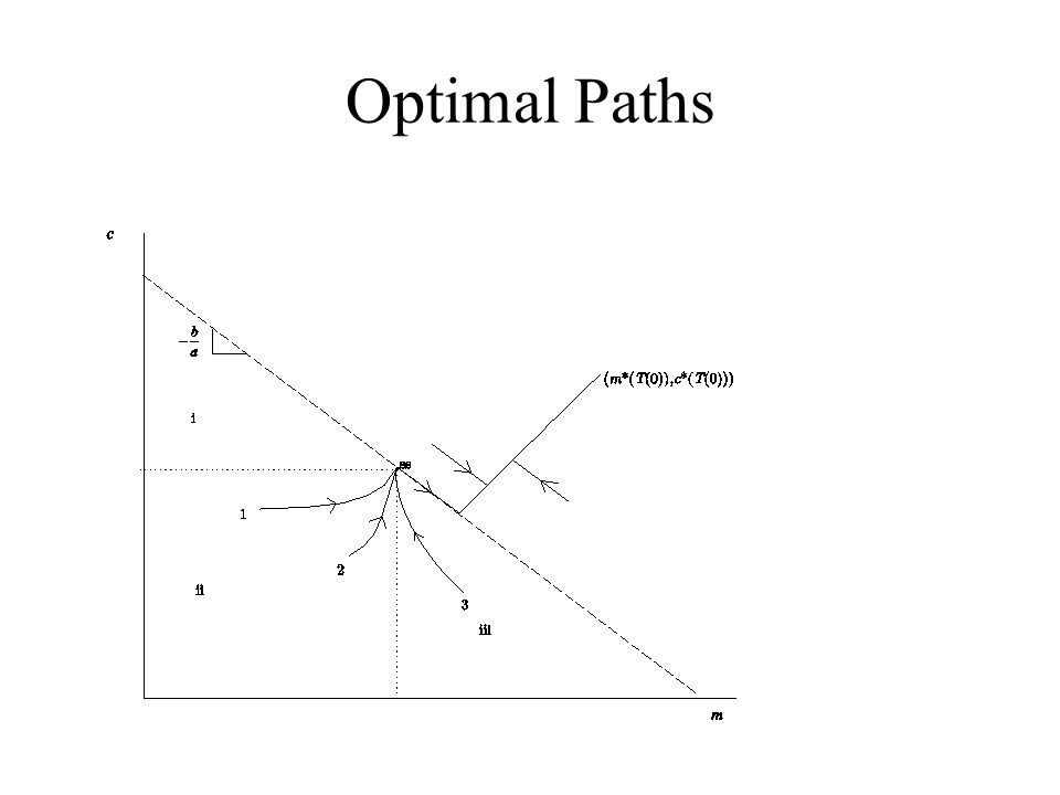 Optimal Paths