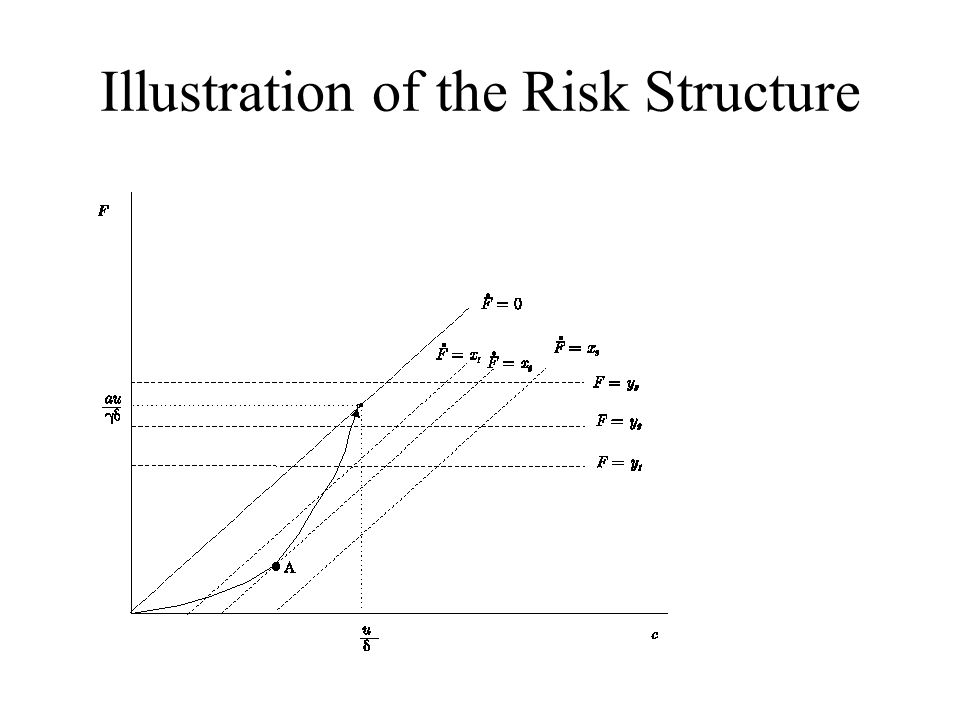 Illustration of the Risk Structure
