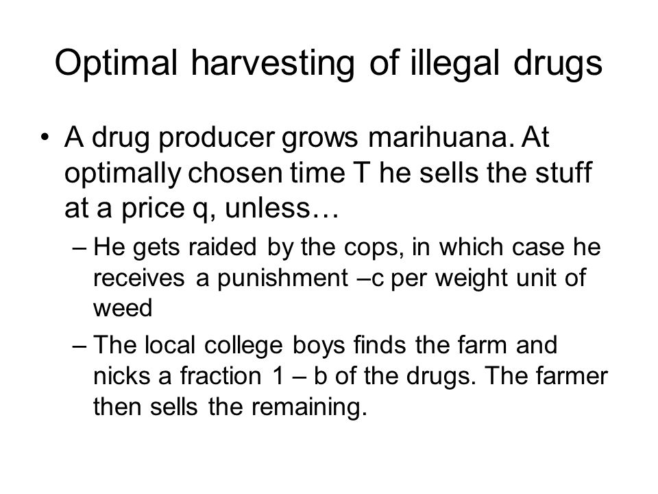 Optimal harvesting of illegal drugs A drug producer grows marihuana. At optimally chosen time T he sells the stuff at a price q, unless… –He gets raid