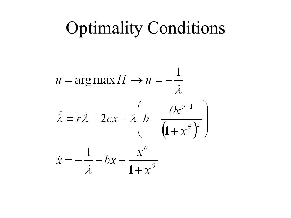 Optimality Conditions
