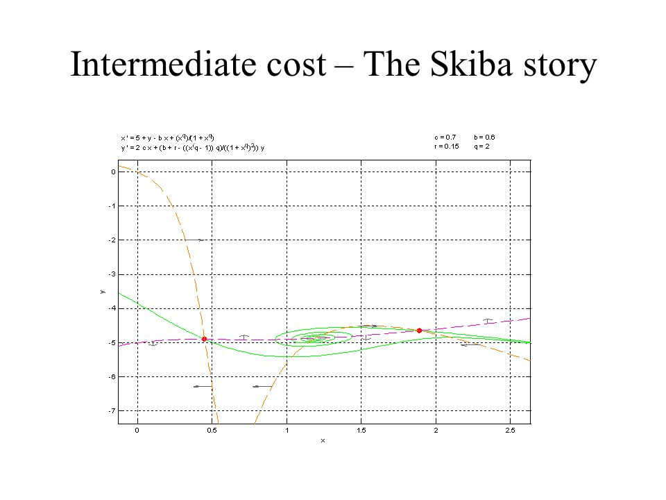 Intermediate cost – The Skiba story