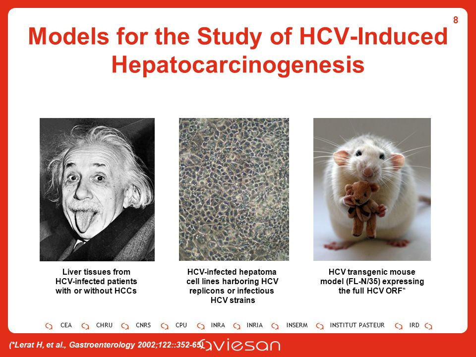 CEACHRUCNRSCPUINRAINRIAINSERMINSTITUT PASTEURIRD Models for the Study of HCV-Induced Hepatocarcinogenesis 8 Liver tissues from HCV-infected patients with or without HCCs HCV-infected hepatoma cell lines harboring HCV replicons or infectious HCV strains HCV transgenic mouse model (FL-N/35) expressing the full HCV ORF* (*Lerat H, et al., Gastroenterology 2002;122::352-65)