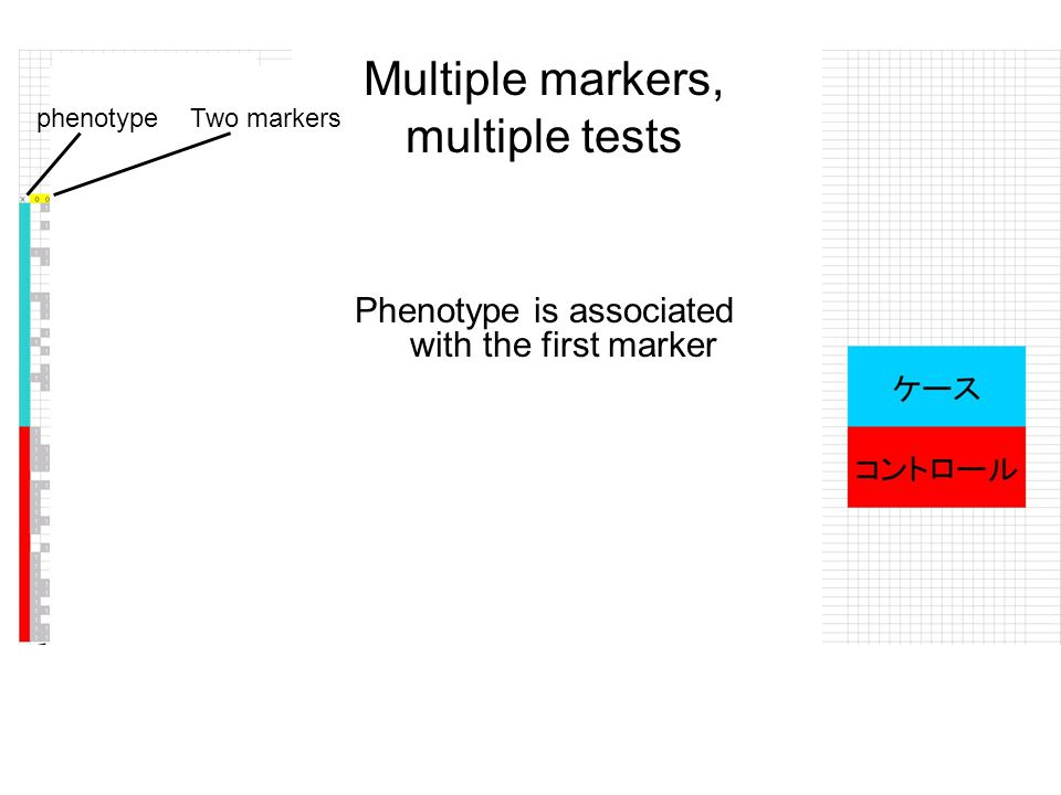 Multiple markers, multiple tests Phenotype is associated with the first marker Two markersphenotype