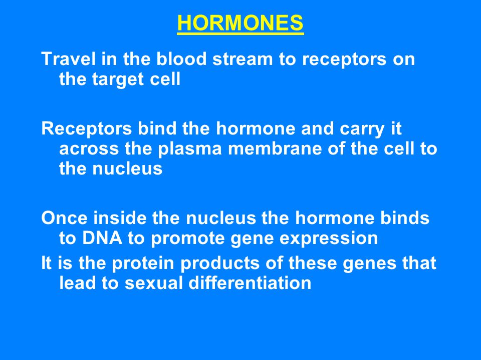 HORMONES Travel in the blood stream to receptors on the target cell Receptors bind the hormone and carry it across the plasma membrane of the cell to
