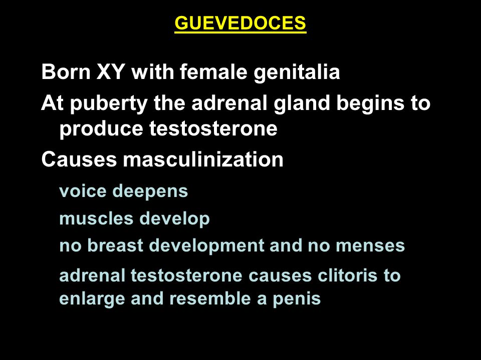 GUEVEDOCES Born XY with female genitalia At puberty the adrenal gland begins to produce testosterone Causes masculinization voice deepens muscles deve