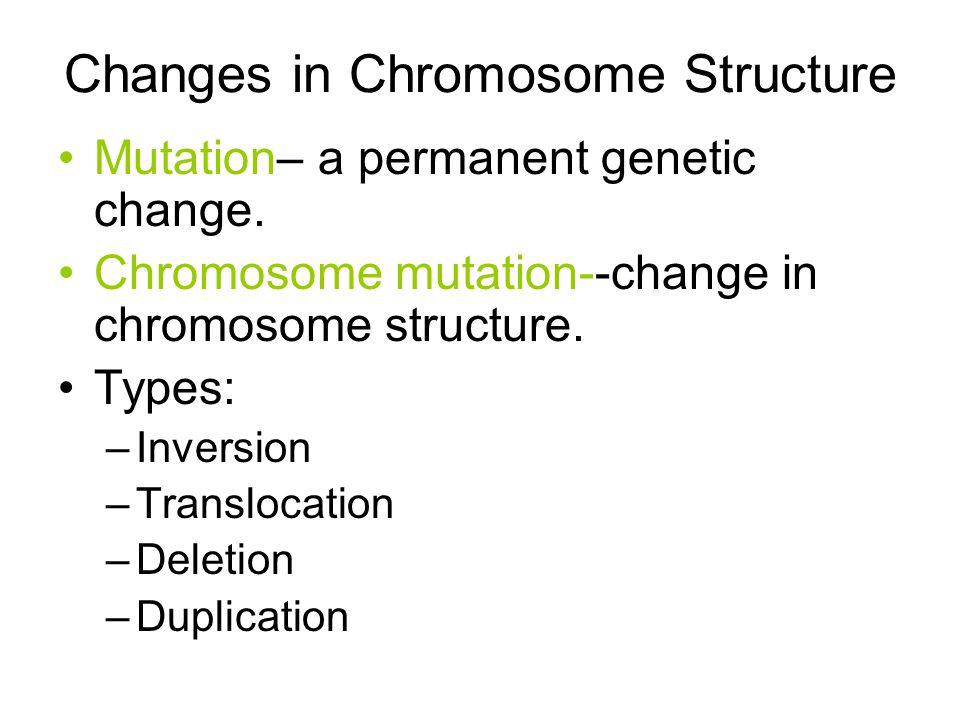 Mutation– a permanent genetic change. Chromosome mutation--change in chromosome structure. Types: –Inversion –Translocation –Deletion –Duplication Cha