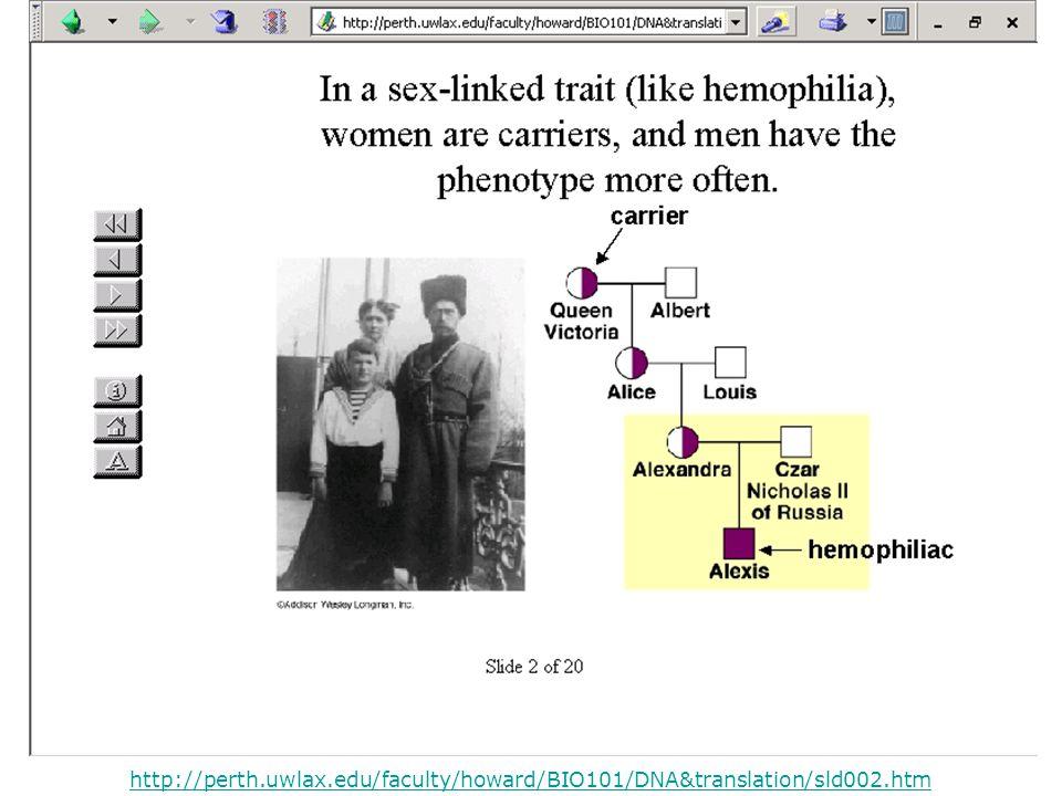 http://perth.uwlax.edu/faculty/howard/BIO101/DNA&translation/sld002.htm